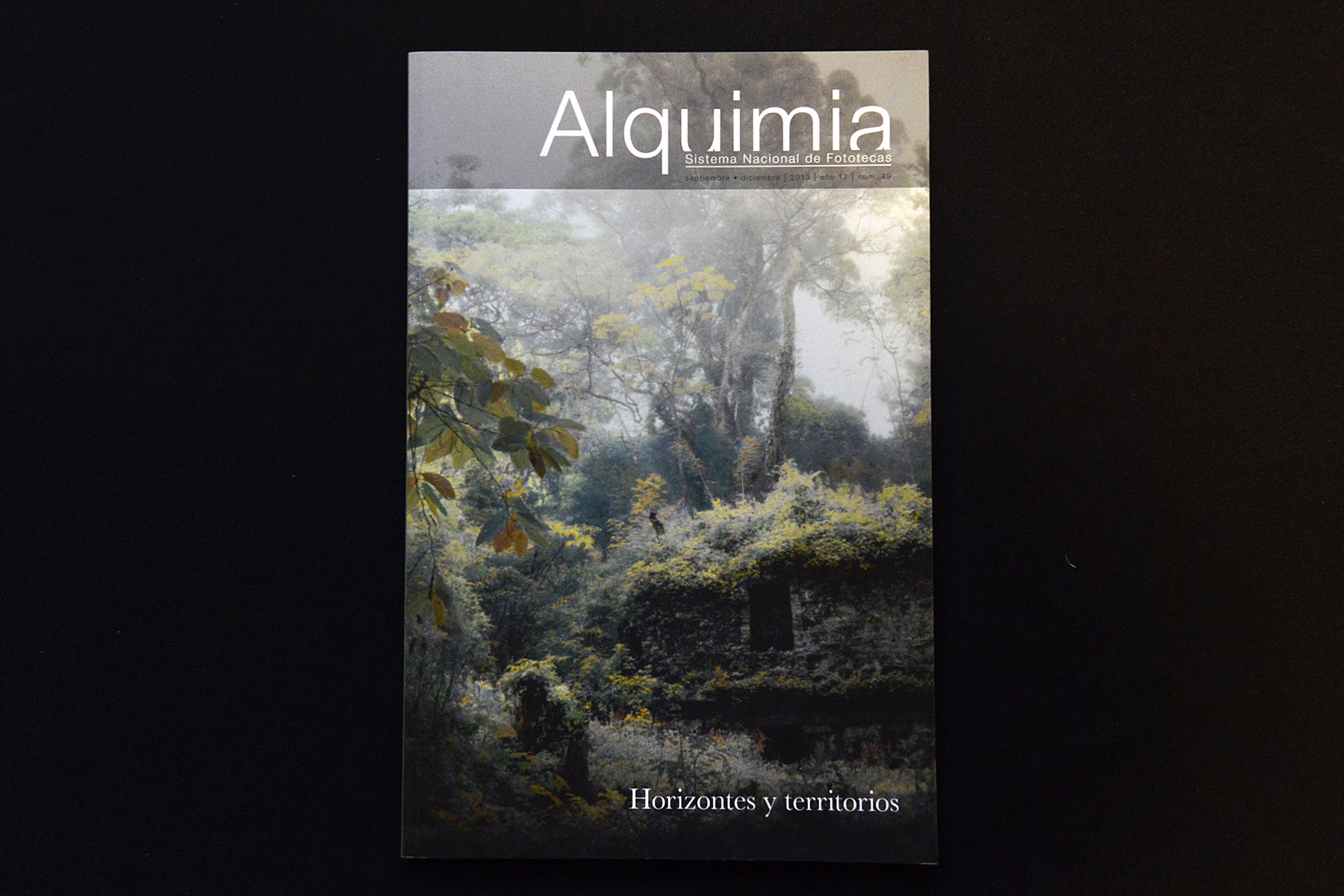 alquimia 49-01